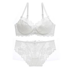 Lace Transparent Sexy Ultra-thin Plus Size Underwear Set  NSXQ13067