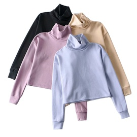 Fashion Small High-neck Pullover Sweatshirt NSLD27883