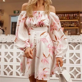 Spring New Style One-shoulder Printed Dress NSAC30021