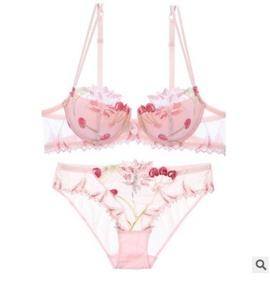 Sexy Straps Mesh Transparent Embroidery Bra  NSCL30139