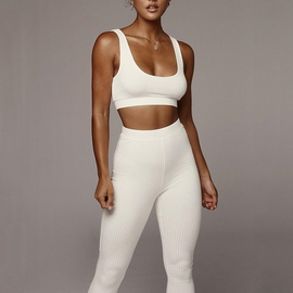 Seamless Knit Hip-lifting Yoga Sports Suit Set NSFD30717