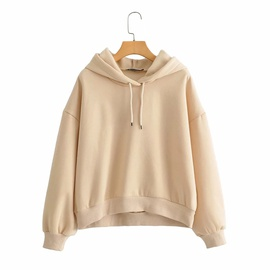 Loose Hooded Pullover Warm Sweater  NSHS31482
