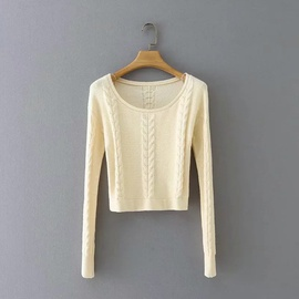 Twist-knit Round Neck Slim Short Sweater NSHS31497