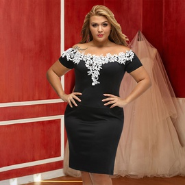 One-neck Lace Strapless Sexy Plus Size Dress NSSI32104
