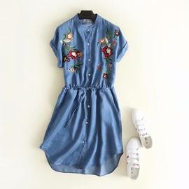 Autumn Embroidered Waist Slim Denim Dress NSAM29927