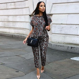Snake Printing Long-sleeved Trousers Two-piece  NSXS35914