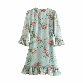 Spring Print Mid-sleeve Dress  NSAM36271