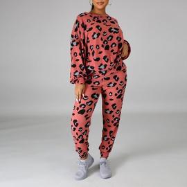 Casual Leopard Print Clothes Set NSXS37382