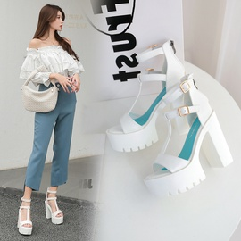 Spring And Summer New Super High Heels Sandals NSCA43587