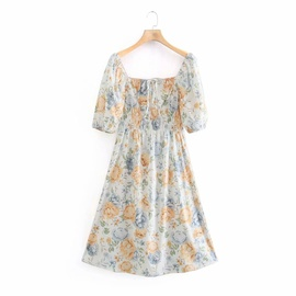 Spring Printed Waist Retro Dress NSAM45458