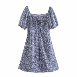Pleated Floral Print Dress  NSAM39279