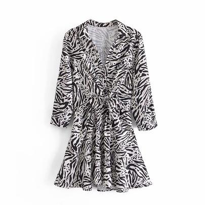 Spring Leopard Print Dress NSAM49542