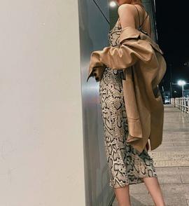 New Leopard Print Dress NSAM47456