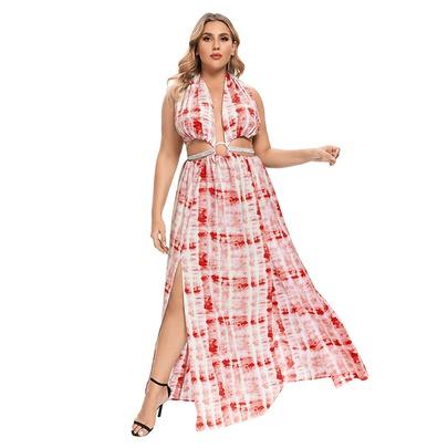 Summer Fashion Printed Long Lace-up Hanging Neck Dress  NSLM54036