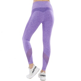 Quick-drying Stretch Seamless Leggings NSOUX47908