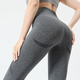 Wide Waistband Seamless Sports Leggings NSOUX47918